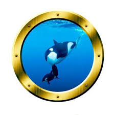 Underwater 3d Porthole Orca Whale Family Wall Art Killer Whale Ocean View 3d Window Gold Portal Art Vwaq Gp3 Wall Decal
