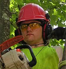 Meet Aaron Wood, Trees Vermont Team Member