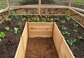 Cedar Complete Raised Garden Bed Kit 8 X 8 X 20 Eartheasy Com