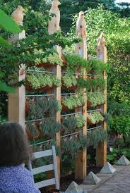 Having Your Favorite Fresh Herbs Close By For Cooking Is Possible Even If You Don T Have Lots O Vertical Garden Diy Vertical Herb Garden Vertical Herb Gardens
