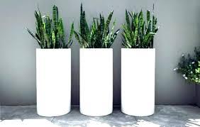 tall outdoor planter interiorabigail co