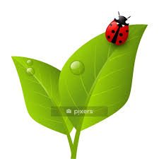 red ladybug on green leaf wall decal