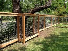 5ft Tall Cattle Panel Fence With 2x6 Inch Cap Backyard Fences Cattle Panel Fence Fence Design