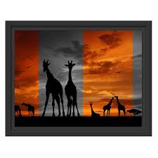 framed photographic art print