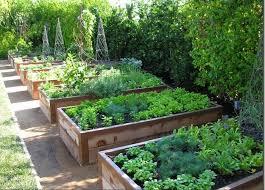 how to create a beautiful edible garden