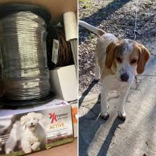 Best Wireless Dog Fence For 1 Acre Top 6 Picks 2020 We Love Doodles