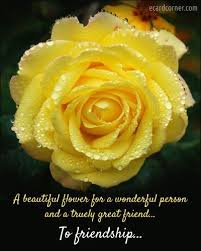 to friendship friendship quote flowers rose yellow friend