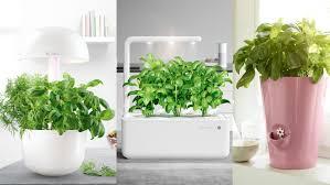smart indoor garden vs blumentopf im