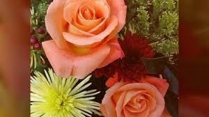 زهور وورود جميلة