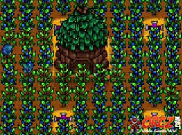 stardew valley tips and tricks orcz