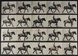 Eadweard Muybridge - 171 Artworks, Bio & Shows on Artsy