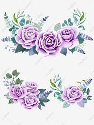 Rosas Moradas Acuarela Hojas Verdes Flores Amarillas Png Imagen