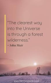 best nature quotes top quotes about nature and life