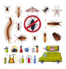 Pest Control Banner Vector Images (over 210)
