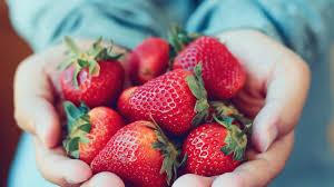 Salade de fraises à la fleur d'oranger de Cyril Lignac : découvrez ...