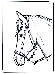 Paard Van Sinterklaas Kleurplaten Sint