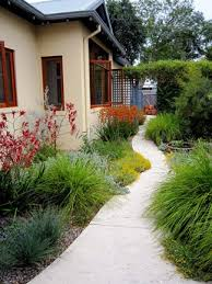 cottage style native garden looks