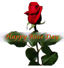 rose day quotes in bengali lovely rose day quotes for wishes