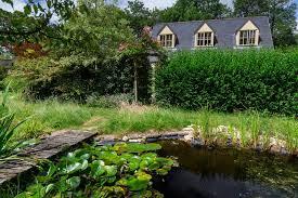 Wildlife Ponds Rhs Gardening