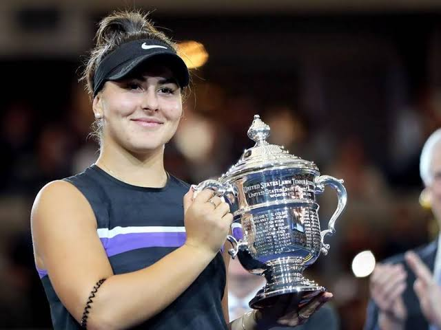 Image result for andreescu""