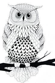 Pin Op Owls