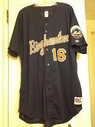 Binghamton Mets Aaron McNeal minor league game worn used baseball jersey  #16 | #424178779