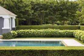 Boxwood Landscaping Ideas Boxwoods For Front Yard And Backyard
