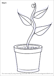 to draw plant in pot plants for kids