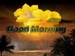good morning images hd gif pictures
