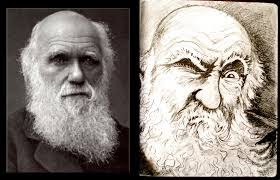 Charles Darwin And The Terrible, Horrible, No Good, Very Bad Day : Krulwich  Wonders... : NPR