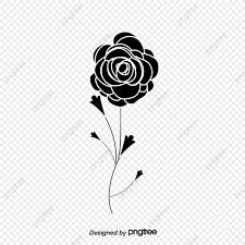 أسود أبيض نمط الورود أبيض وأسود الورد أبيض وأسود زهرة نمط بلاك