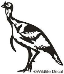 8 Turkey Decals Window Stickers Ideas In 2020 Hunting Decal Hunting Decals