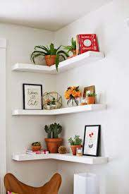 unexpected ways to decorate with plants