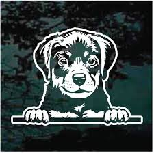 Rottweiler Puppy In The Window Car Decals Stickers Decal Junky