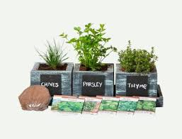 30 indoor herb pots and planters to add
