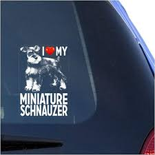 Amazon Com I Love My Miniature Schnauzer Clear Vinyl Decal Sticker For Window Zwergschnauzer Dwarf Dog Sign Art Print Arts Crafts Sewing