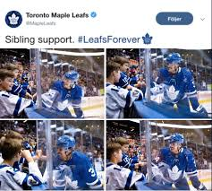 Pin by addie greene on That's Hockey, Baby! | Hockey goals, Hockey, Toronto  maple leafs