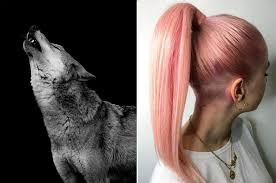 we ll give you a hair color