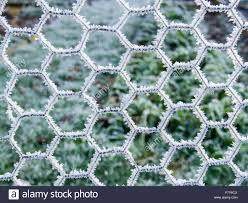 Metal Chicken Wire Livestock Fencing Covered In Thick Ice And Hoar Stock Photo Alamy