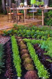 backyard herb garden arrangement ideas