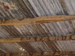 interior designers steel roof