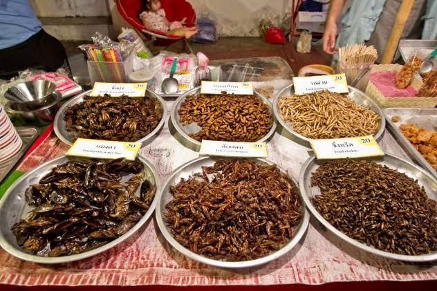 Passpod, Serangga Goreng, Thailand, Kuliner Thailand