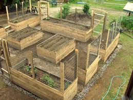 My Accessible Contained Raised Bed Organic Garden 75 Completed Once Done It Will Be Totally Deer Pro Garden Layout Garden Bed Layout Building A Raised Garden