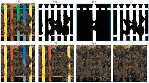 Detection And Restoration Of Image From Multi Color Fence Occlusions Springerlink
