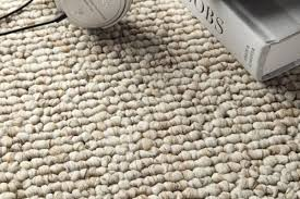 carpet remendation for pets texags
