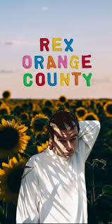 rex orange county wallpapers top free