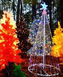 holiday lights in columbia