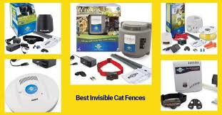 Best Invisible Cat Fences In 2020 Technomeow