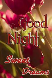 160 best love romantic good night image