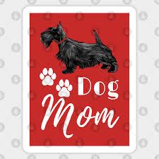 scottish terrier scottie dog mom dog